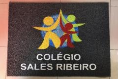 modelos sem borda_0001_sales ribeiro